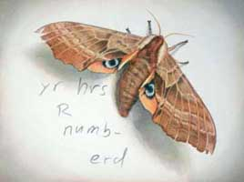 Numb, 2008, watercolor